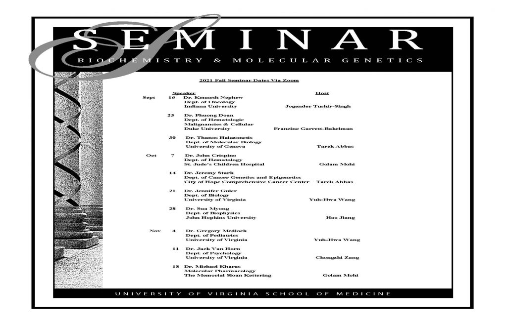 BMG Seminar Series for the Fall of 2021